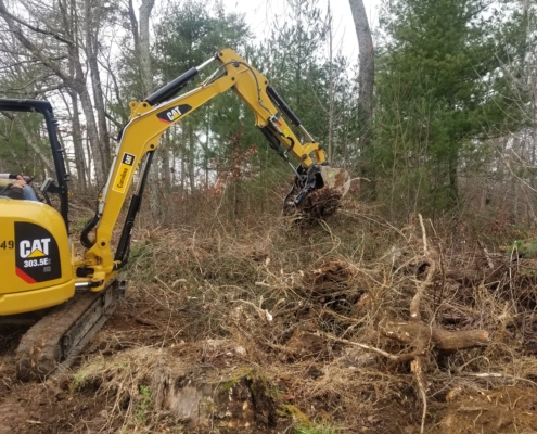 Stump and Brush Removal