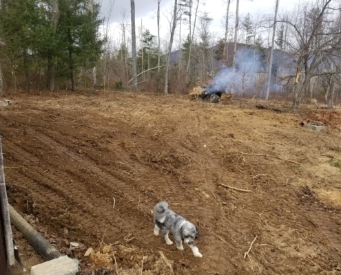Debris Removal and Grading